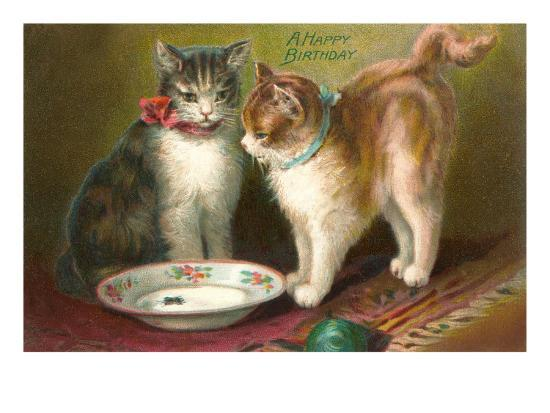 A Happy Birthday Cats With Milk Art Print By