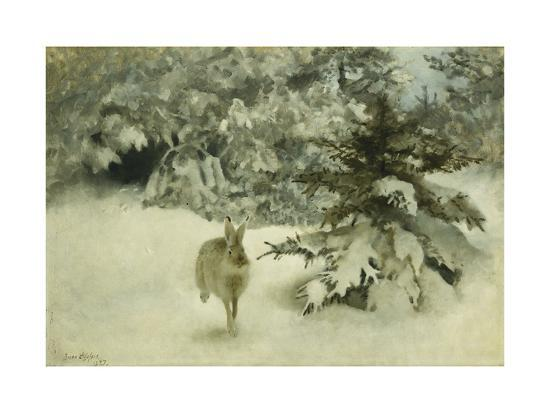 A Hare in the Snow-Bruno Liljefors-Giclee Print