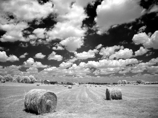 A Hayfield with Summer Clouds-Rip Smith-Photographic Print
