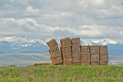 A Haystack Teeters in a Field in Montana's Gallatin Valley, Near Bozeman-Gordon Wiltsie-Photographic Print