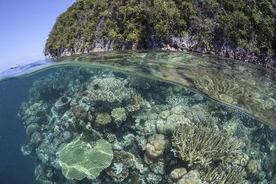 A Healthy Coral Reef Grows Near Limestone Islands in Raja Ampat-Stocktrek Images-Photographic Print