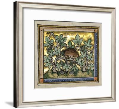 A Hedgehog (detail)-Franco-Flemish 13th Century-Framed Art Print
