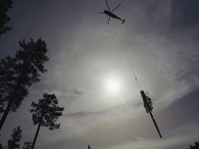 A Helicopter Lifts Cut Timber from the Forest; Helicopter Logging is Said to be Easier on Forest-Joel Sartore-Photographic Print