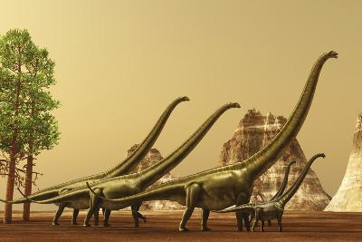 A Herd of Mamenchisaurus Dinosaurs Migrate to Better Feeding Ground--Art Print