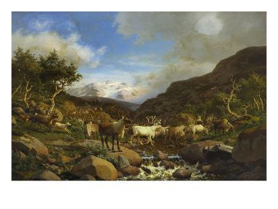 A Herd of Reindeer Fording a Stream in a Mountainous Landscape-Carl-henrik Bogh-Giclee Print