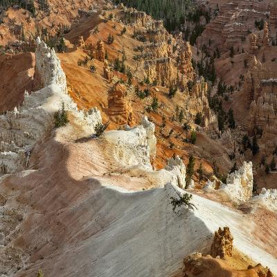 A High Angle View of Hoodoos in Cedar Breaks National Monument, a Natural Amphitheater-Babak Tafreshi-Photographic Print