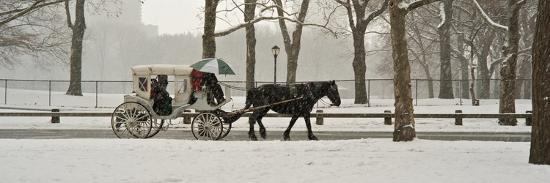 A Horse a Carriage in Central Park During a Blizzard-Kike Calvo-Photographic Print