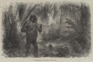 A Hunter Killed by a Gorilla