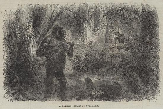 A Hunter Killed by a Gorilla--Giclee Print