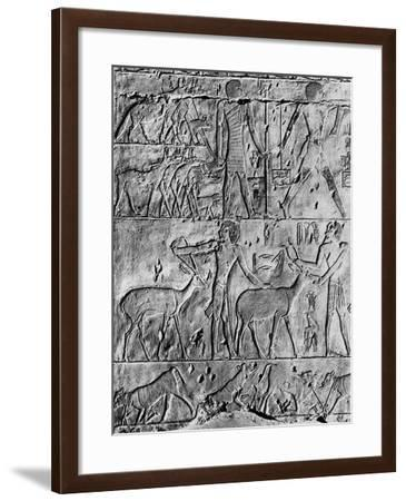 A Hunting Scene from the Tomb of Ptahhotep, Near Saqqara, Egypt, C2650 BC--Framed Giclee Print