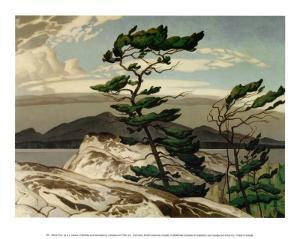 White Pine by A^ J^ Casson