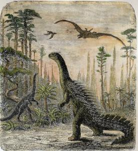 Dinosaurs of the Jurassic Period: a Stegosaurus with a Compsognathus in the Background by A. Jobin