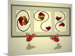 Intertwined Poppy Images Being Viewed by Butterflies by A.K.A