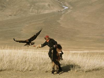 A Kazakh Falconer Hunts with His Golden Eagle-David Edwards-Photographic Print