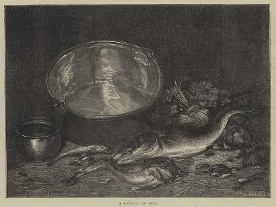 A Kettle of Fish--Giclee Print