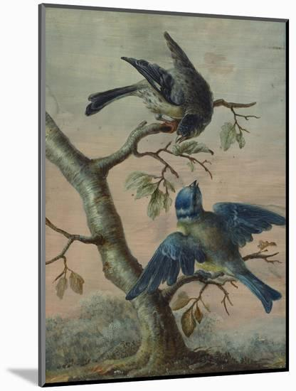 A Kingfisher on a Sapling; and a Blue Tit with a Finch on a Sapling-Christoph Ludwig Agricola-Mounted Premium Giclee Print