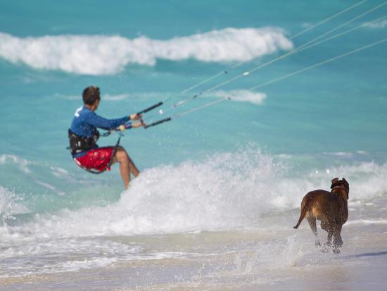 A Kiteboarder and His Dog Enjoying Gusty Winds from Hurricane Tomas-Mike Theiss-Photographic Print
