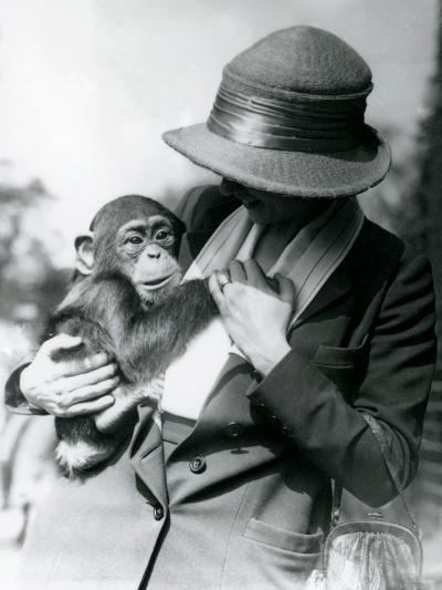 A Lady Holds a Young Chimpanzee at London Zoo, June 1922-Frederick William Bond-Photographic Print