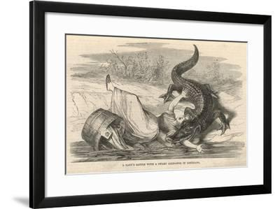 A Lady's Battle with a Swamp Alligator in Louisiana--Framed Giclee Print