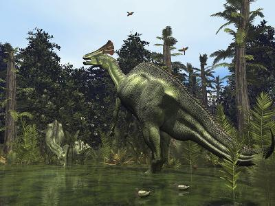 A Lambeosaurus Rears onto its Hind Legs in Response to a Threat-Stocktrek Images-Photographic Print