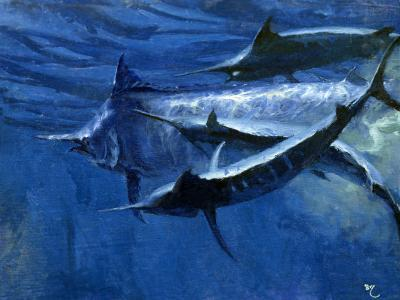 A Large Female Black Marlin Is Courted by Two Smaller Males Just Below the Surface-Mike Rivken-Photographic Print