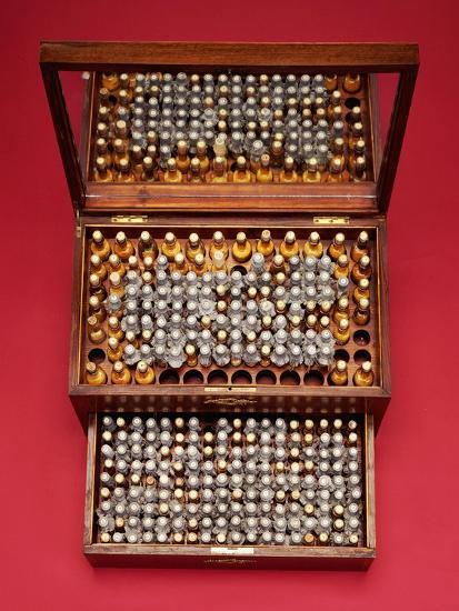 A Large Mahogany Homeopathic Medicine Chest, Dr  Willmar Schwabe, Leipzig  Giclee Print by   Art com