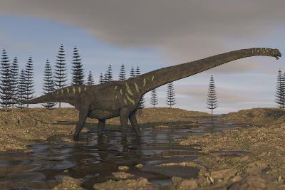 A Large Mamenchisaurus Walking Along a Dry Riverbed-Stocktrek Images-Art Print