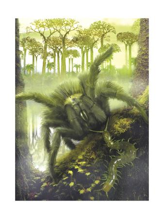 https://imgc.artprintimages.com/img/print/a-large-megarachne-found-in-carboniferous-forests_u-l-pu22hc0.jpg?p=0