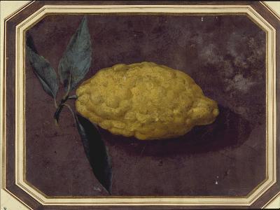 A Lemon--Giclee Print