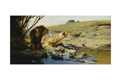 A Lion and Lioness at a Stream-Wilhelm Kuhnert-Giclee Print