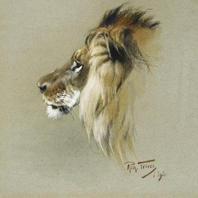 A Lion's Head-Richard Friese-Giclee Print