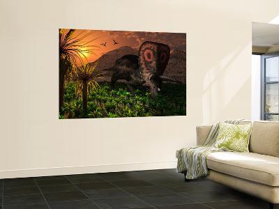 A Lone Torosaurus Dinosaur Feeding on Plants-Stocktrek Images-Wall Mural