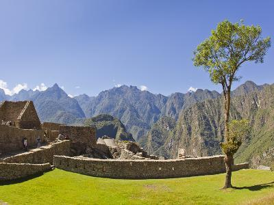 A Lone Tree and the Pre-Colmubian Inca Ruins at Machu Picchu-Mike Theiss-Photographic Print