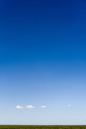 https://imgc.artprintimages.com/img/print/a-lonely-cloud-dwarfed-by-a-vast-blue-sky-over-the-savannah-grassland-horizon_u-l-pokuj60.jpg?p=0