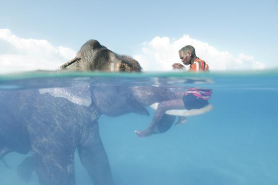 A Mahout, Sits on the Tusks of Rajan, the Elephant, in the Andaman Islands-Cesare Naldi-Photographic Print