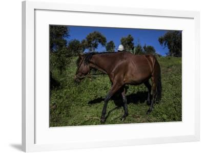 A man with his horse at a cooperative farming settlement.-Joel Sartore-Framed Photographic Print