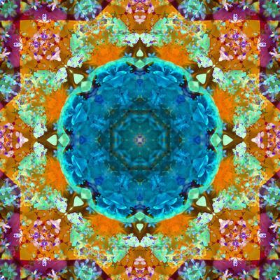 https://imgc.artprintimages.com/img/print/a-mandala-from-flower-photographs-and-water_u-l-q11zhwg0.jpg?p=0