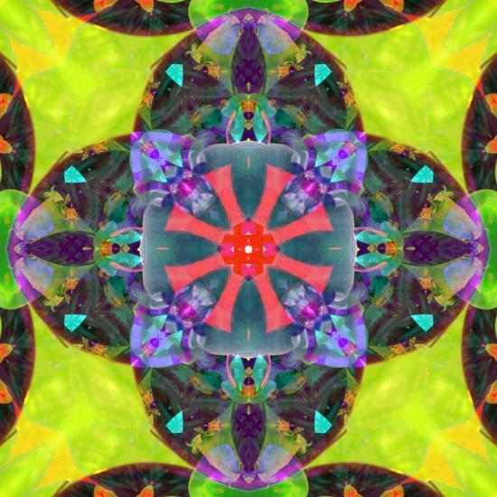 A Mandala from Flowers, and Ornaments-Alaya Gadeh-Photographic Print
