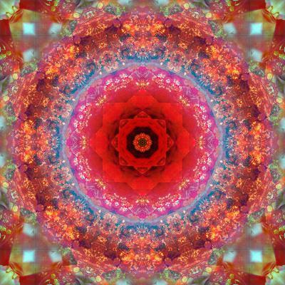https://imgc.artprintimages.com/img/print/a-mandala-from-rose-and-cherry-blossom-photographs_u-l-q11zamq0.jpg?p=0