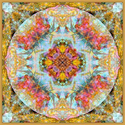 https://imgc.artprintimages.com/img/print/a-mandala-made-out-of-flowers-and-plants_u-l-q11zf0u0.jpg?p=0