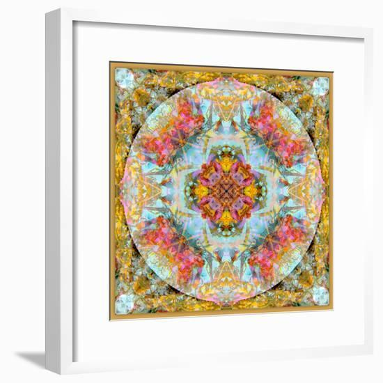 A Mandala Made Out of Flowers and Plants-Alaya Gadeh-Framed Photographic Print