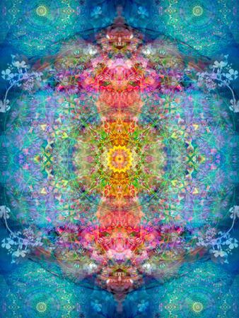 https://imgc.artprintimages.com/img/print/a-mandala-ornament-from-flower-photographs-conceptual-layer-work_u-l-q11yttf0.jpg?p=0