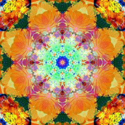 https://imgc.artprintimages.com/img/print/a-mandala-ornament-from-flower-photographs-conceptual-layer-work_u-l-q11z6rg0.jpg?p=0