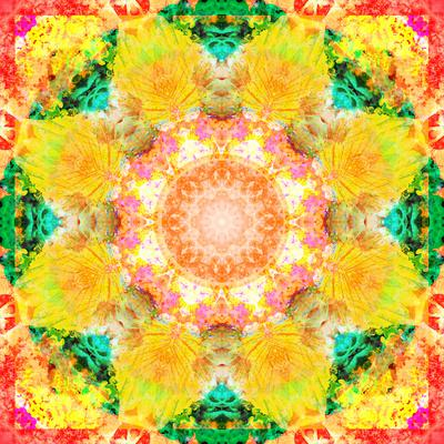 https://imgc.artprintimages.com/img/print/a-mandala-ornament-from-flower-photographs-conceptual-layer-work_u-l-q11z7yo0.jpg?p=0
