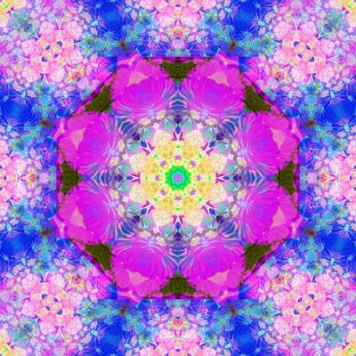 https://imgc.artprintimages.com/img/print/a-mandala-ornament-from-flower-photographs-conceptual-layer-work_u-l-q11z8000.jpg?p=0