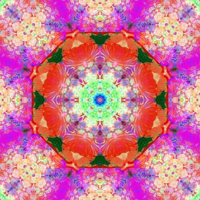 https://imgc.artprintimages.com/img/print/a-mandala-ornament-from-flower-photographs-conceptual-layer-work_u-l-q11z8440.jpg?p=0
