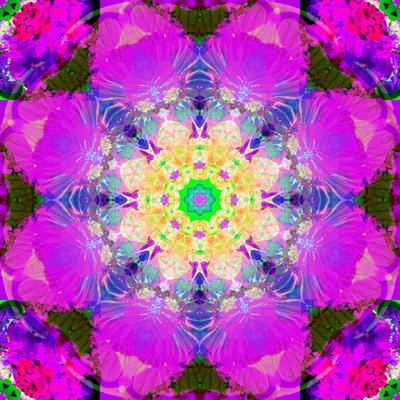 https://imgc.artprintimages.com/img/print/a-mandala-ornament-from-flower-photographs-conceptual-layer-work_u-l-q11z85e0.jpg?p=0