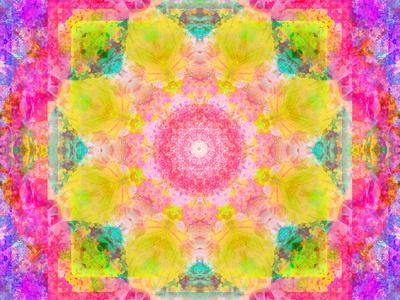https://imgc.artprintimages.com/img/print/a-mandala-ornament-from-flowers-photograph-many-layer-artwork_u-l-q11zh2i0.jpg?p=0
