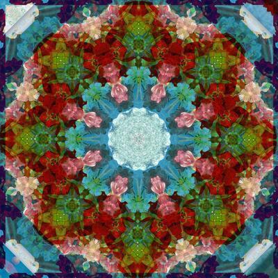 https://imgc.artprintimages.com/img/print/a-many-layered-flower-mandala_u-l-q11ynn60.jpg?p=0