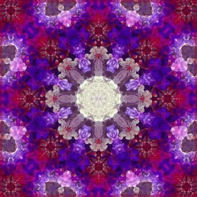 https://imgc.artprintimages.com/img/print/a-many-layered-flower-mandala_u-l-q11zaj50.jpg?p=0